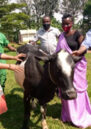 Anothiata Nyirashirambere is awarded a cow in recognition of her reconciliation work within her community.